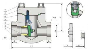 compact steeel check valve 800Lb