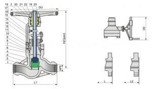 Pressure Seal, cast steel globe valve