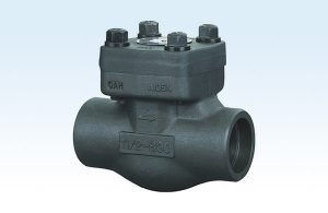 Swing Forged Steel Check Valve